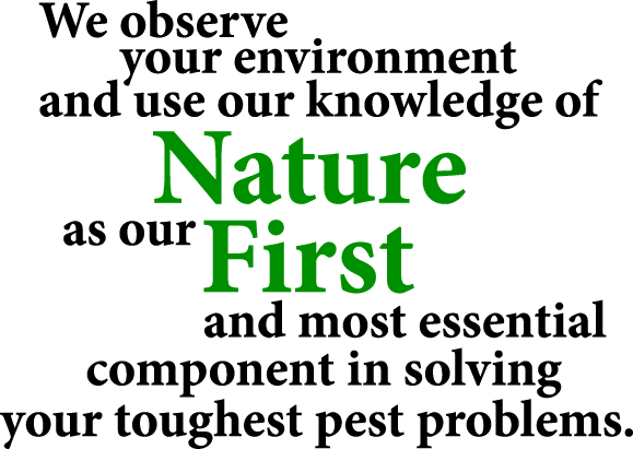 NAture first on the enviroment